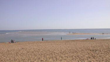 La plage à Trousse Chemise